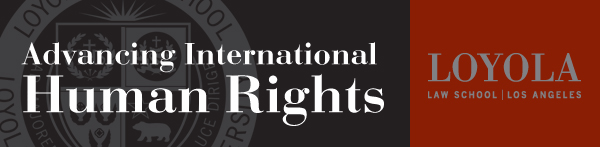 Strategic Litigation in the International Human Rights System: Why, How, and with What Results?