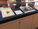Not Silent: Finding Voices in Civil War Artifacts Exhibit Display Case image 3