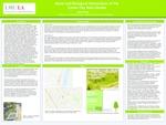 Social and Biological Interactions of the Culver City Rain Garden