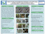 Patterns of Urban Hummingbird Nest Distribution on the LMU Campus by Amy Weber